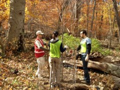 Volunteers plant trees in Rock Creek Park as part of the Rock Creek Songbirds initiative